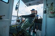 Lobster Fishing - Nova Scotia