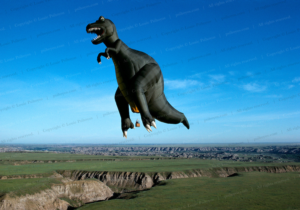 """A 129-foot-tall (39 m) T.rex hot-air balloon, owned by Thunder and Colt Balloons, glides over Dinosaur Provincial Park.<br /> A 129-foot-tall (39 m) T.rex hot-air balloon, owned by Thunder and Colt Balloons comes to a rest and the hot air is released by paleontologist Phil Currie (far right in field) who was riding in the gondola.<br /> T. Rex, """"tyrant lizard king,"""" was one of the largest-ever meat eating land animals.  The bi-pedal giant grew to some 40 feet (12 meters) and weighed up to 7 US tons (6.5 metric tons) and small two-fingered hands that were actually surprisingly strong."""