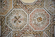 Picture of a Roman mosaics design depicting, from the ancient Roman city of Thysdrus. 3rd century AD. El Djem Archaeological Museum, El Djem, Tunisia. .<br /> <br /> If you prefer to buy from our ALAMY PHOTO LIBRARY Collection visit : https://www.alamy.com/portfolio/paul-williams-funkystock/roman-mosaic.html . Type - El Djem - into the LOWER SEARCH WITHIN GALLERY box. Refine search by adding background colour, place, museum etc<br /> <br /> Visit our ROMAN MOSAIC PHOTO COLLECTIONS for more photos to download as wall art prints https://funkystock.photoshelter.com/gallery-collection/Roman-Mosaics-Art-Pictures-Images/C0000LcfNel7FpLI