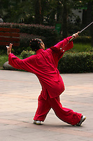 Chinese martial arts consist of a number of styles that were developed over the centuries. Those styles can be classified according to common themes that mimic movements from animals or a history and training method that gather inspiration from various Chinese philosophies, myths and legends. Some styles focus on the harnessing of qi while others concentrate on improving muscle and cardiovascular fitness. Each style offers a different approach to the common problems of self defense, coordination and health.