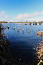 Flooding of River Kennet, Berkshire, Jan 2014