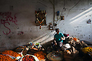 A man smokes a cigarette at his stall amidst A  marigolds for garlands at the Mehrauli flower market, Delhi, India