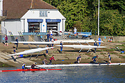 Chiswick, Greater London, UK., 11th October 2020, General View, towards, Cygnet and Barnes Bridge Ladies RC's, Pairs Head of the River Race, Restricted entry and Shortened Course, COVID-19,  Barnes Bridge and Dukes Meadows location, [Mandatory Credit: Peter Spurrier/Intersport Images]