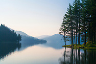 Simple scene of a quiet lake with pine trees