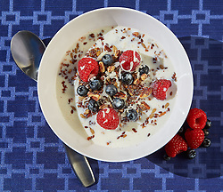 Low Carb Cereal - Client: Atkins Nutritionals