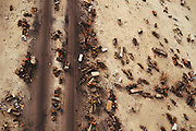 "An aerial of a small section of the Jahra road from Kuwait City to Basra, Iraq. American forces chased and trapped retreating Iraqi forces north of Kuwait City on the night of February 25 and the day of February 26, 1991. These units withdrew via the Jahra road on the way to Basra, an escape route that has become known as the ""highway to hell."" They were attacked by coalition aircraft and it is estimated that several thousand retreating Iraqis died. ."