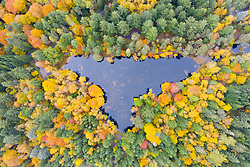 Pitlochry, Scotland, UK. 20 October 2020. Autumn colours at Loch Dunmore in Faskally Wood near Pitlochry in Perthshire. Aerial view of Loch Dunmore surrounded by trees showing autumn foliage.   Iain Masterton/Alamy Live News