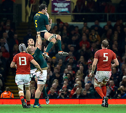 Franco Mostert of South Africa claims the restart<br /> <br /> Photographer Simon King/Replay Images<br /> <br /> Under Armour Series - Wales v South Africa - Saturday 24th November 2018 - Principality Stadium - Cardiff<br /> <br /> World Copyright © Replay Images . All rights reserved. info@replayimages.co.uk - http://replayimages.co.uk