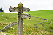 Permissive Path and Public Bridleway sign. We hiked the valley of Smardale Gill to cross its historic Viaduct and visit Smardale Gill National Nature Reserve, in Yorkshire Dales National Park, England, United Kingdom, Europe. England Coast to Coast hike day 7 of 14; overnight 2 of 2 in Brownber Hall Country House, Cumbria county. [This image, commissioned by Wilderness Travel, is not available to any other agency providing group travel in the UK, but may otherwise be licensable from Tom Dempsey – please inquire at PhotoSeek.com.]