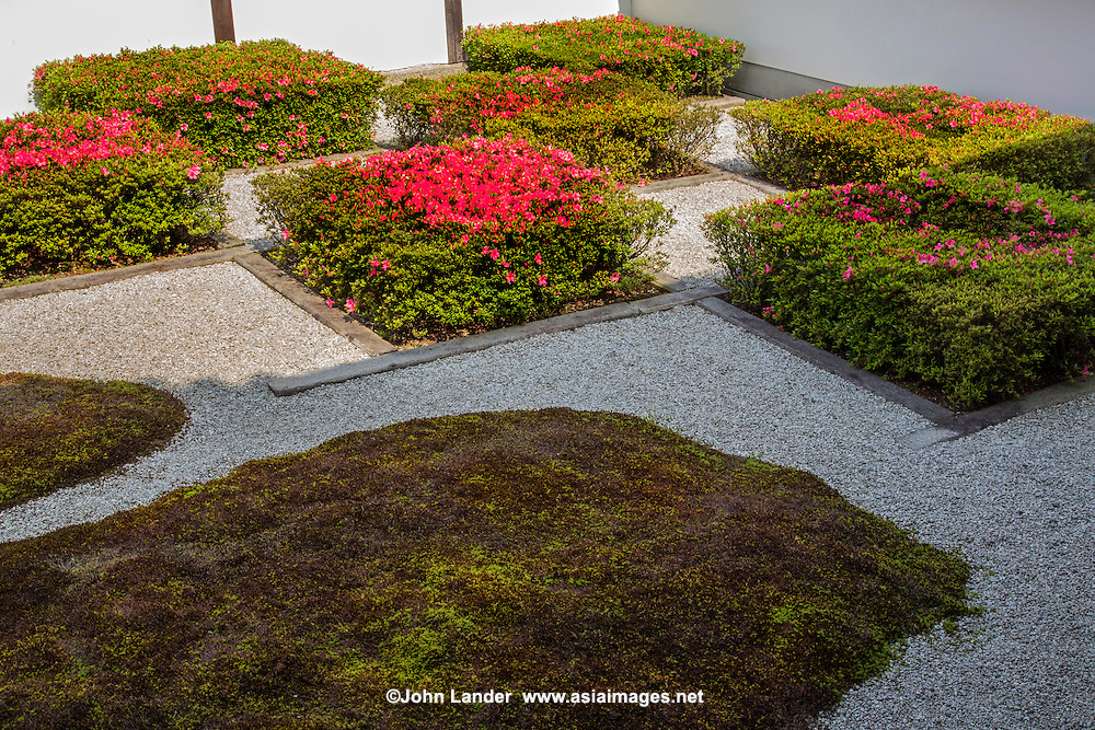 """Tofukuji Western Garden - Compared with rigidity of the southern garden's Zen-style dry stone-garden, the western garden has a gentle style composed of moss and azalea shrubs trimmed in a chequered pattern like a """"Seiden"""" or Chinese style of dividing plots of land.  Renowned landscape architect Shigemori Mirei designed this garden"""