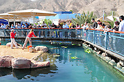 Israel, Eilat, The underwater observatory Built over a coral reef