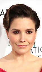 2019 National Board Of Review Gala at Cipriani 42nd Street on January 08, 2019 in New York City. 08 Jan 2019 Pictured: Sophia Bush. Photo credit: WMB/MPI/Capital Pictures / MEGA TheMegaAgency.com +1 888 505 6342