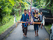 09 OCTOBER 2016 - JEMBRANA, BALI, INDONESIA:  Members of makepung team (buffalo racing) carries a buffalo yoke to the track in Tuwed, Jembrana, Bali. Makepung is buffalo racing in the district of Jembrana, on the west end of Bali. The Makepung season starts in July and ends in November. A man sitting in a small cart drives a pair of buffalo bulls around a track cut through rice fields in the district. It's a popular local past time that draws spectators from across western Bali.    PHOTO BY JACK KURTZ