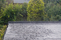 Heavy rain in the summertine on flat roof of a house in Ireland