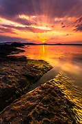 Amazing summer sunset by the sea