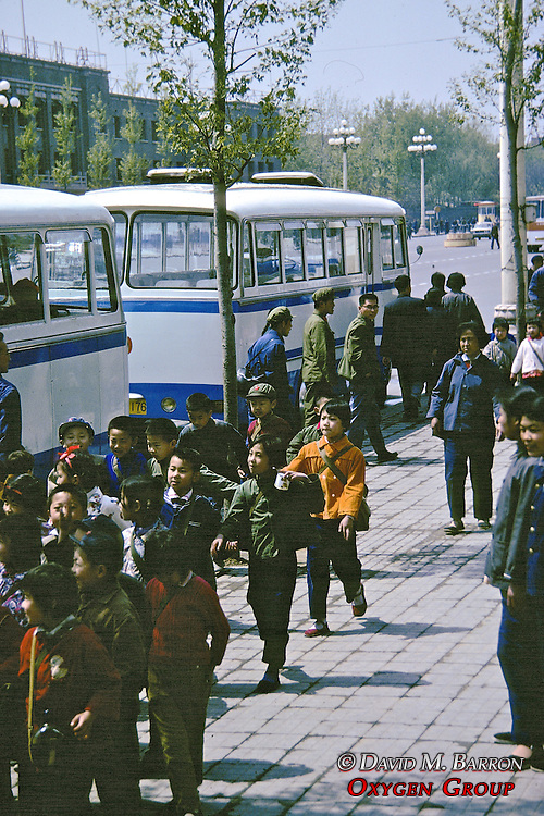 Busses And School Children
