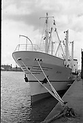 """Echo"" a new ship to sail the Holland Ireland line, visits Dublin Port.<br />