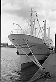 "1961 - ""Echo"" a new ship to sail the Holland Ireland line, visits Dublin Port"