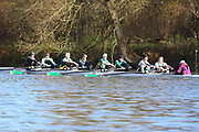 Crew: 36   Op MasD 8+   Abingdon Rowing Club   ABN-TROUP<br /> <br /> Wallingford Head 2017<br /> <br /> To purchase this photo, or to see pricing information for Prints and Downloads, click the blue 'Add to Cart' button at the top-right of the page.