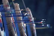 Arrows in Archery target