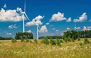 Farma wiatrowa w okolicach Suwałk, Polska<br /> Wind farm near Suwałki, Poland