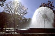 Burger Fountain at Loring Park.  Minneapolis Minnesota USA