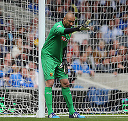 Heurelho Gomes during the Sky Bet Championship match between Brighton and Hove Albion and Watford at the American Express Community Stadium, Brighton and Hove, England on 25 April 2015.