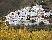 Small whitewashed village of Daimalos Vados near Arenas, Malaga province, Spain