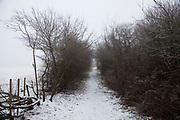 Frozen winter landscape at Bleasby. Pathway through the frosty environment.