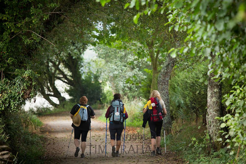 Pilgrim group with shells on rucksacks on the Camino de Santiago Pilgrim's Walk to Santiago de Compostela in Galicia, Spain