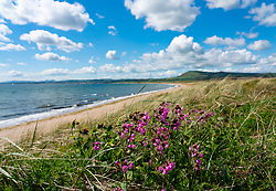View of coast at Dumbarnie on  Largo Bay, Fife , Scotland, UK