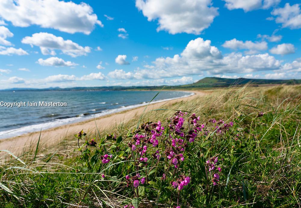 View of coast at Dumbarnie on  Largo Bay, Fife , Scotland, UK