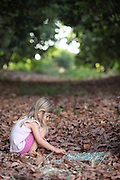 Young girl explores leaves in a forest Model release available