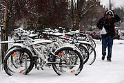 © Licensed to London News Pictures. 18/01/2013. London, UK Commuter bikes covered in snow at Turnham Green Station . Snow in West London today 18th January 2013. Photo credit : Stephen Simpson/LNP