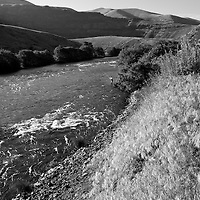 A fly fisherman in a run along the lower Deschutes River in Oregon.
