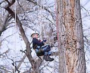 Jack Nawrocki and his father Tom took a Recreational tree climbing class near Denver, Colorado.
