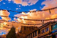 Main Bazaar Road, Ladakh, Jammu and Kashmir State, India.