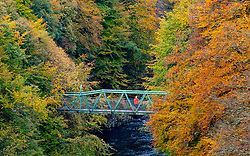 Pitlochry, Scotland, UK. 24th October 2021. A woman stands of a footbridge crossing the River Garry near Killiecrankie to admire the vibrant autumnal colours in the surrounding forest .   Iain Masterton/Alamy Live News.