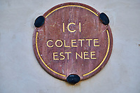 France, Yonne (89), La Puisaye, Saint-Sauveur-en-Puisaye, maison natale de Colette // Europe, France, Burgundy, Yonne, Saint Sauveur en Puisaye, Colette house