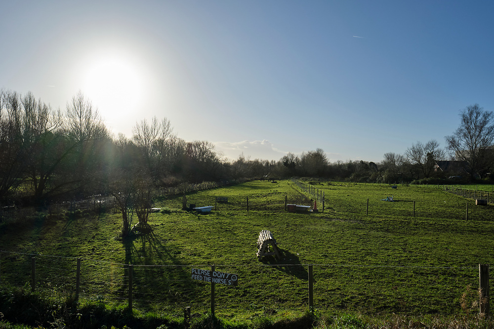 """Empty paddocks next to the river Gipping, a sign reads """"Please don't feed the horse's"""" looking towards the low winter sun.<br /> <br /> Photo by Jonathan J Fussell, COPYRIGHT 2020"""