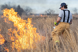 Fireman using leaf blower to control fire by blowing it into already blackened areas during a controlled burn on the Daphne Prairie, a remnant of the Blackland Prairie, Mount Vernon, Texas, USA.