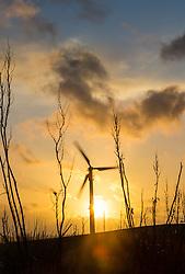 THEMENBILD - ein Windrad zur Stromerzeugung im Gegenlicht der untergehenden Sonne in einem Windpark in der Nähe von Heiligenhafen, Schleswig-Holstein, Deutschland am 02.März 2015 // a Wind turbine backlit by the setting sun, Heiligenhafen, Schleswig-Holstein, Germany on 2015/03/12. EXPA Pictures © 2015, PhotoCredit: EXPA/ JFK