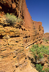 Australia, Northern Territory, Watarrka National Park, steep walls of Kings Canyon stained red by iron oxides