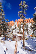 Rock formations and trail sign along the Navajo Loop, Bryce Canyon National Park, Utah