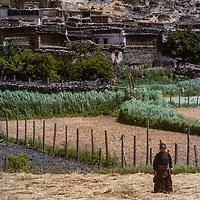 A woman stands in barley fields in a village in the Kali Gandaki Gorge, in Nepal.