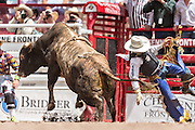 Bull rider Tyler Smith is thrown from Hey Buds at the Cheyenne Frontier Days rodeo at Frontier Park Arena July 24, 2015 in Cheyenne, Wyoming. Frontier Days celebrates the cowboy traditions of the west with a rodeo, parade and fair.