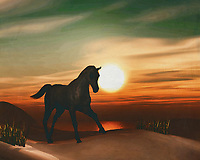 Horses in the sunset by the sea This painting easily brings the atmosphere of the sea to your home. This coastal scene can be printed in different sizes and on different materials. Both on canvas, wood, metal or framed so it certainly fits into your interior. –<br /> -<br /> BUY THIS PRINT AT<br /> <br /> FINE ART AMERICA / PIXELS<br /> ENGLISH<br /> https://janke.pixels.com/featured/horse-at-sunset-jan-keteleer.html<br /> <br /> <br /> WADM / OH MY PRINTS<br /> DUTCH / FRENCH / GERMAN<br /> https://www.werkaandemuur.nl/nl/shopwerk/Paard-bij-zonsondergang/778283/132?mediumId=15&size=70x55<br /> –<br /> -