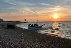 © Licensed to London News Pictures. 16/10/2018. Hastings, UK.  RTX445 steams into shore. Daybreak over the English Channel, fisherman bring in the morning catch under unseasonably warm conditions. Hastings has one of the last functioning and the largest beach-launched fishing fleet in Europe. Boats intentionally run aground on reinforced keels and are winched up out the water by bulldozer. Photo credit Guilhem Baker/LNP