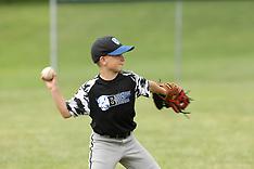 Brockport Bisons 10 Baseball