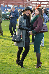 NEWBURY, ENGLAND 26TH NOVEMBER 2016: Left to right, Carla Kyle and Camilla Henderson at Hennessy Gold Cup meeting Newbury racecourse Newbury England. 26th November 2016. Photo by Dominic O'Neill